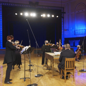 Orchestra members in a concert hall