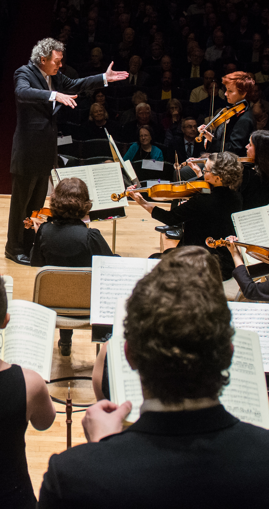 orchestra and conductor